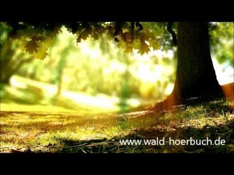 Wenn der Wald spricht 2 - Kapitel 15 - Arbeit