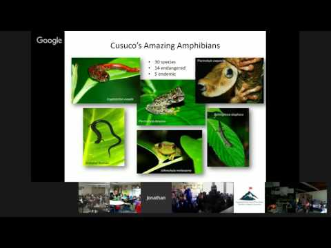 Jonathan Kolby: Protecting Frogs