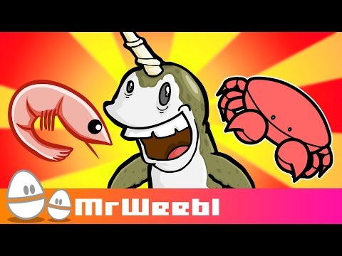Sealife A selection of animated songs by Mr Weebl