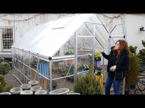 Talking Greenhouses from Inexpensive to Luxury! 🌿 // Garden Answer