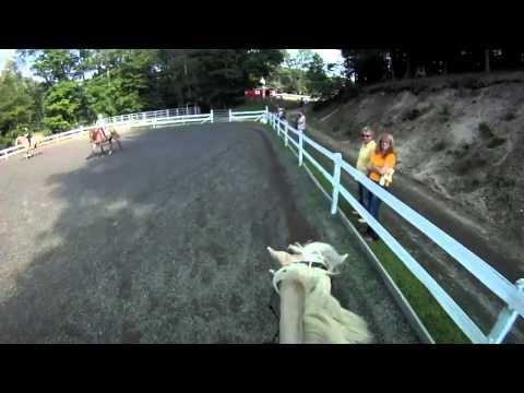 Laila SJ Ranch Pleasure Ride