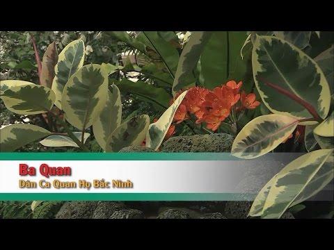[Karaoke] Ba Quan Mời Trầu (SC) - Dân Ca Quan Họ Bắc Ninh (Beat HD)