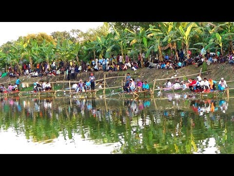 Fishing Competition in Village | Festival Fishing Video By Daily Village Life
