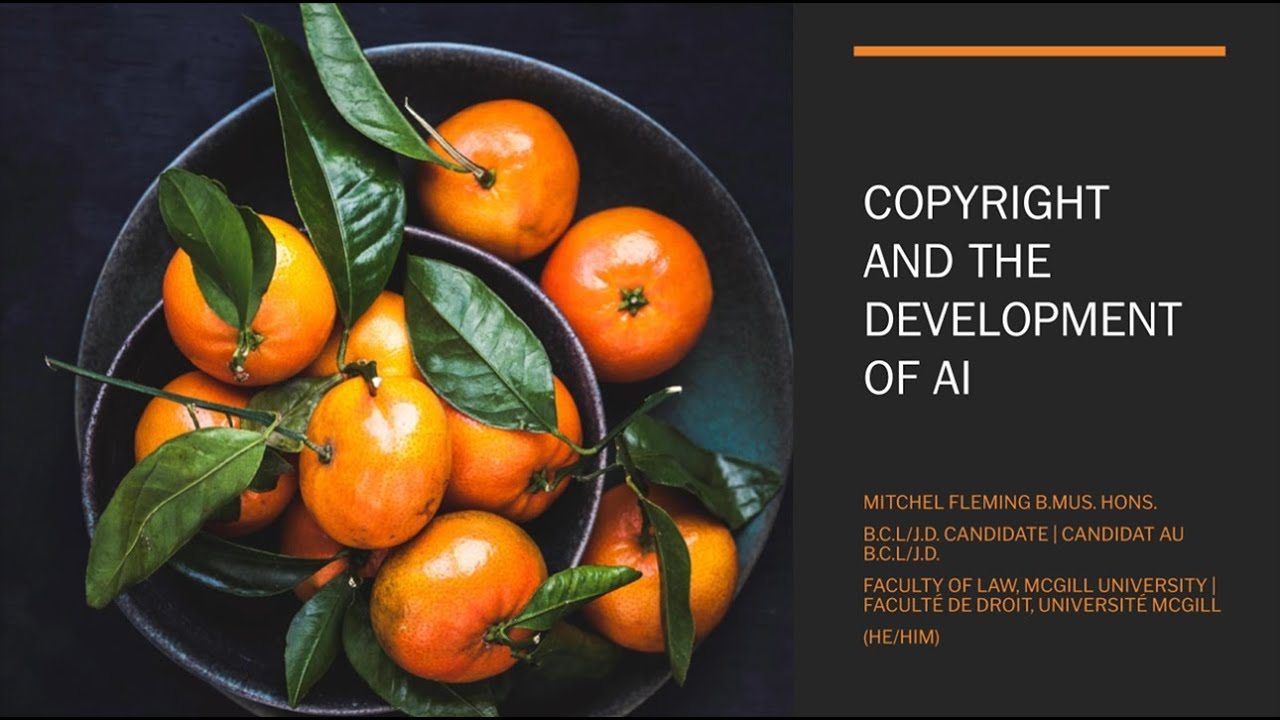 Copyright and the Development of AI - Mitchel Fleming