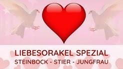 Liebesorakel Spezial - 1. Halbjahr 2020💖 Erdzeichen