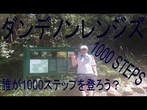 #12 ダンデノンレンジズ1000歩 Dandenong Ranges 1000 steps