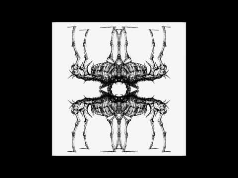 Shrouded Elk - Absolute Dominion