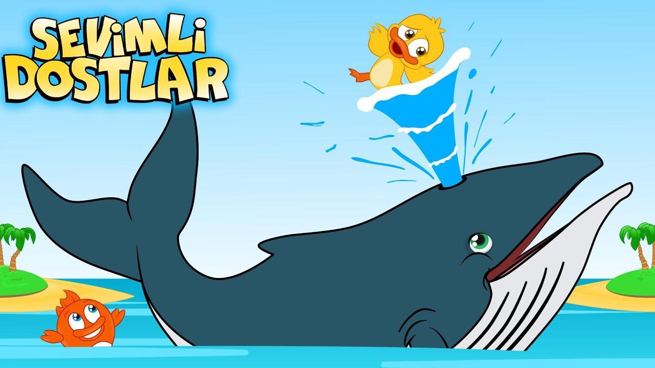 Sevimli Dostlar ve Balinalar! | Sevimli Dostlar bebek şarkıları | Çocuk şarkıları | #sevimlidostlar