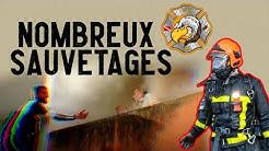 Feu d'Immeuble : Les Pompiers de Seine Et Marne en Action (SDIS77)