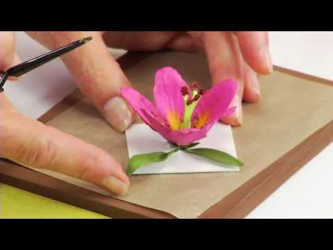 How to Use Sizzix Thinlits Lily Flower Die 658275