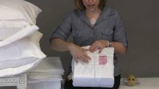 How to Prevent Bed Bugs - Bed Bugs 101