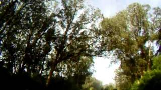 morning at the meadow 009.AVI