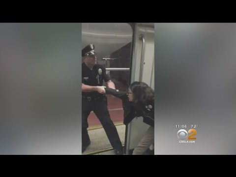 Caught On Video: Teenage Girl Forcibly Pulled Off Metro Train