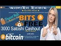 Free 0.76389521 Bitcoin - Captcha.satoshi-bits Review the Withdraw Pay