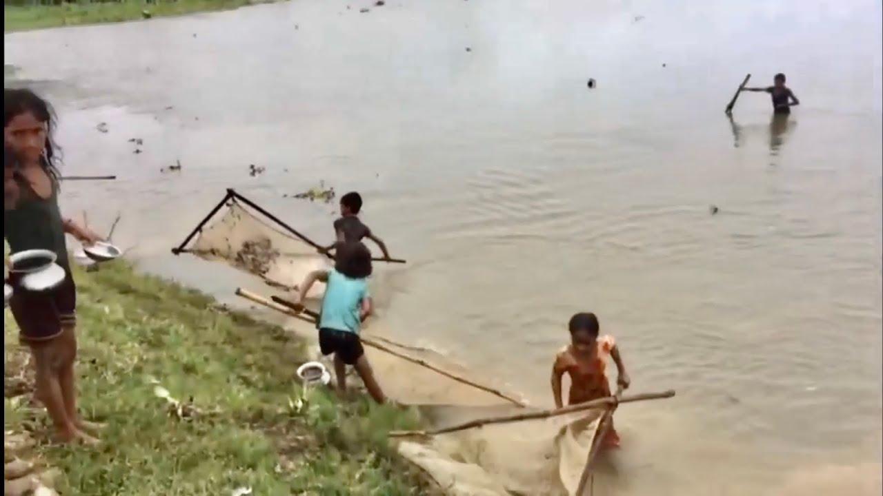 Fresh small fish in village.