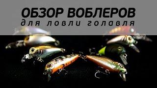 Обзор воблеров для ловли голавля [FishMasta.ru]