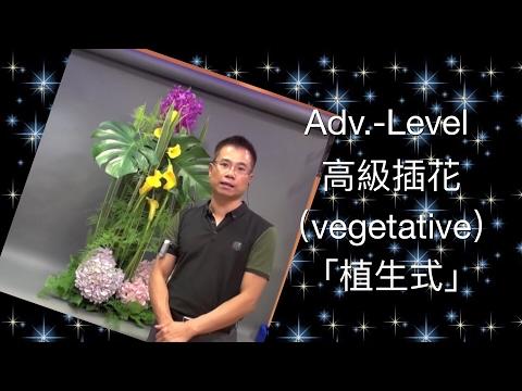 "Advanced Flower Arrangement ""Vegetative""插花高級程度「植生式」Adv-01-B40"