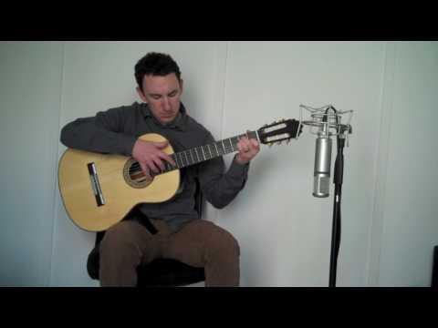 Pop & Rock Acoustic Classical Guitarist - Michael