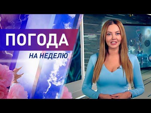 Погода на неделю 16-22 августа 2021. Прогноз погоды. Беларусь   Метеогид
