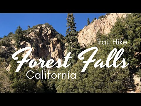 Forest Falls California Trail Hike To Big Falls Waterfall : Everything You Need To Know