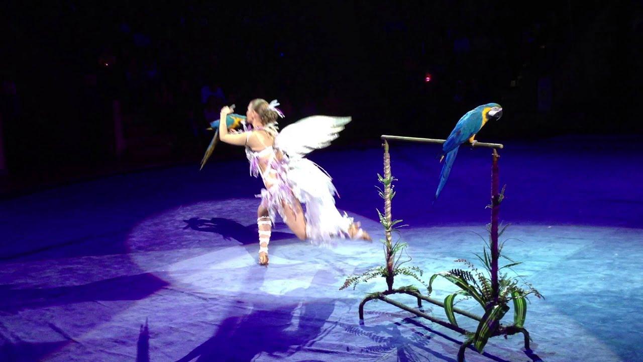 Эротика в цирке! Эротическое выступление с попугаями