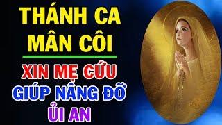 TUYT NH THNH CA MN CI Nhng Bi Thnh Ca Mn Ci Hay Nht - Xin M Cu Gip Nng i An