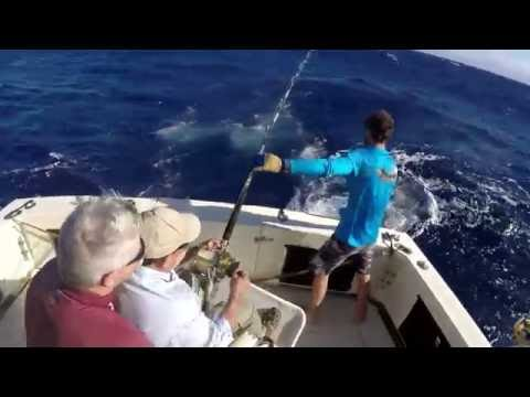 Tito's First and Probably Only Pacific Blue Marlin