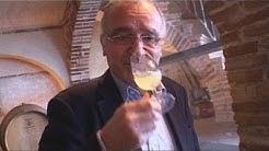 Ali Mahmoudi, vigneron œnologue (Labastide Saint Pierre)