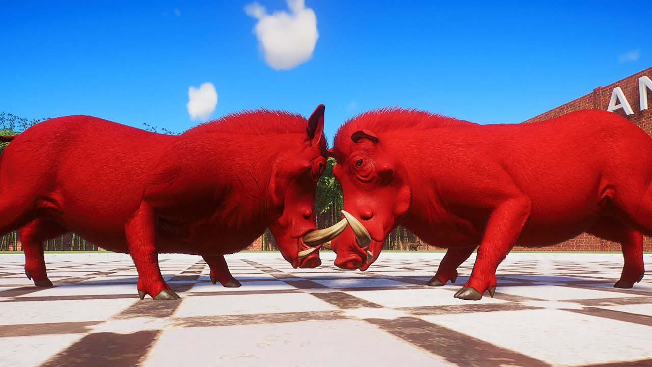 Common Warthog Fight in Planet Zoo | Planet Zoo Battle