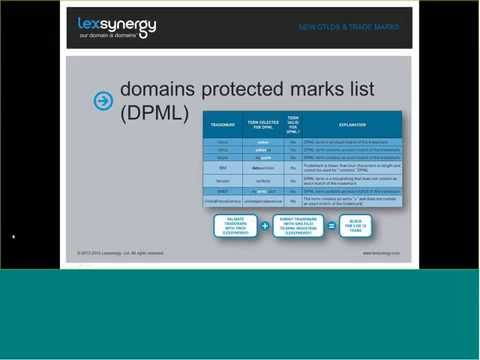 Lexsynergy Webinar Series – New Domain Names, Familiar Risks