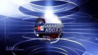 OMN: Yaada Jiraattota Shaashamannee fi Roobee Baalee
