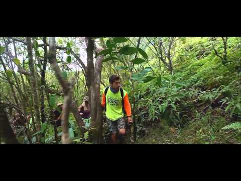 """waydes-world-hawaii-tours""-hd"