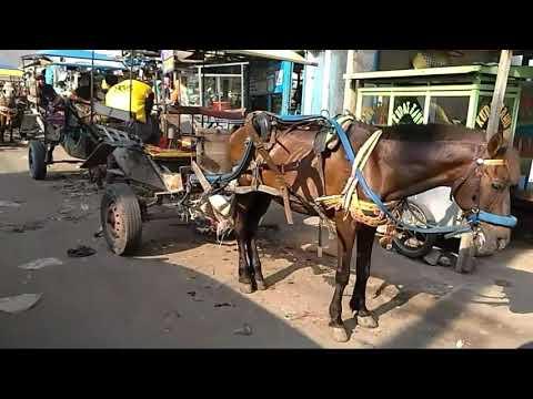 Limbangan - Cibiuk - Leuwigoong (Bah Dadeng - Papatong)