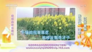 [我们在一起]千垛田间看菜花 板桥故居寻才子| CCTV少儿