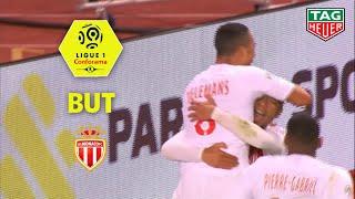 But Youri TIELEMANS (42') / AS Monaco - Montpellier Hérault SC (1-2)  (ASM-MHSC)/ 2018-19