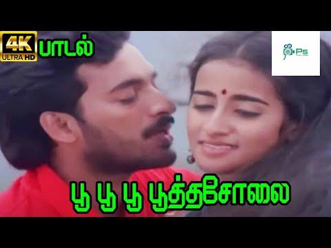 Poo Poo Poothasolai ||பூ பூ பூத்தசோலை || S. P. B, S. Janaki || Love Duet Melody H D Song