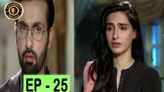 tum milay episode 25   ary digital top pakistani drama
