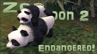 Endangered! Baby Panda!! - Episode #3