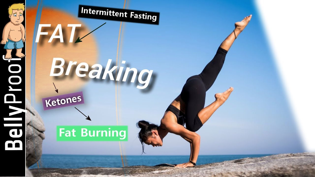 LION Intermittent Fasting - The Ultimate Guide (2019) 3