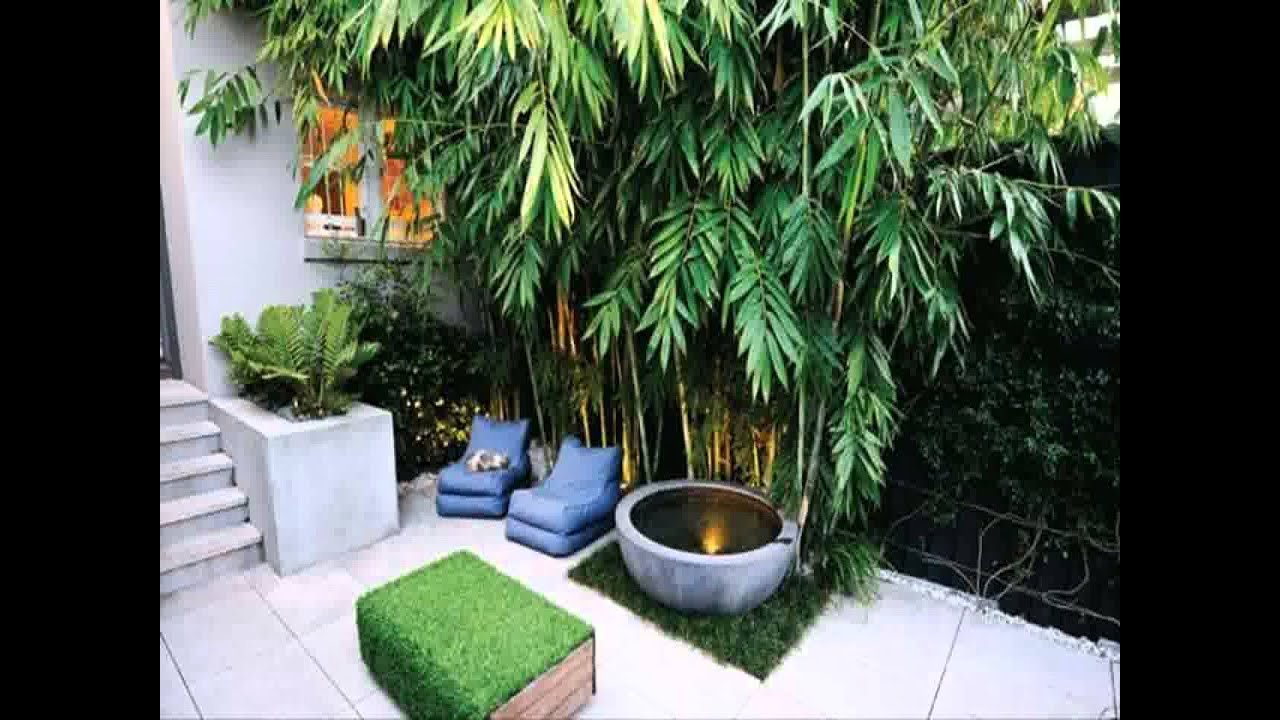 Small Space courtyard garden design ideas - YouTube