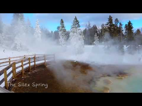 冬季黄石太美了!| Yellowstone in Winter| 2018 Christmas Daytrip to Yellowstone| Watch bison| DJI Osmo Pocket