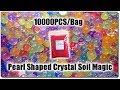 Banggood | REVIEW | 10000PCS/Bag Pearl Shaped Crystal Soil Magic (9-11mm) (red color)