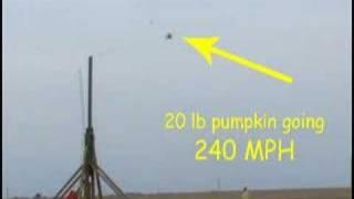 Pumpkin Trebuchet