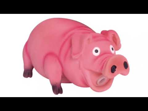 Pig Toy Oink Sound Effect Squeaky Pet Toys (Prank Your Dog)
