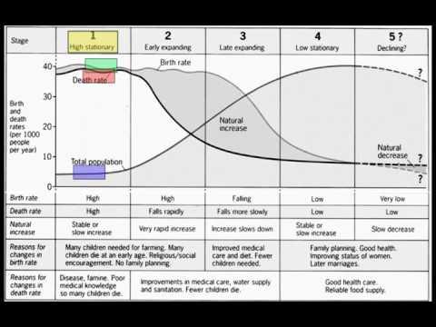Unit 2 - Demographic Transition and Population Pyramids