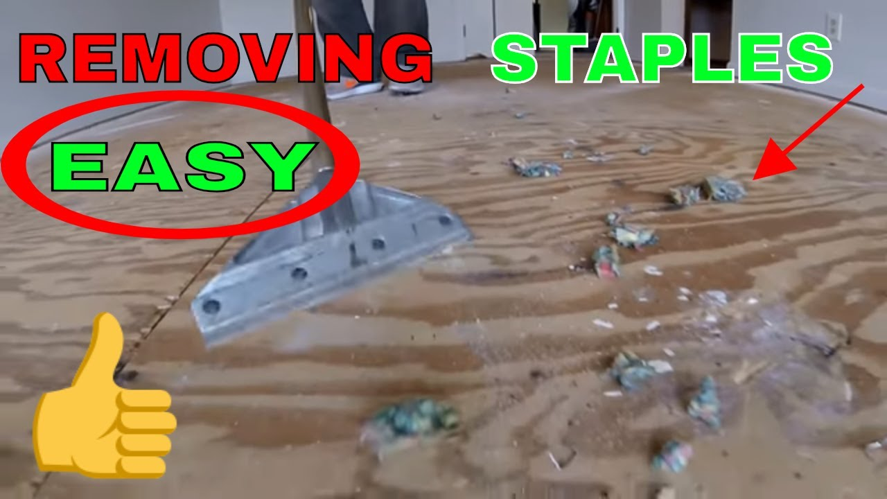 How To Remove Carpet Pad Staples Easy Youtube