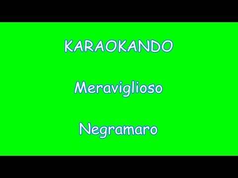 Karaoke Italiano - Meraviglioso - Negramaro (Testo)