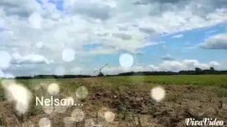 Video Aipro-Gyro. ..Cavalon à Nelson download MP3, 3GP, MP4, WEBM, AVI, FLV Juli 2018