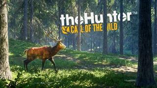 POLOWANIE NA ZWIERZYNĘ! | theHunter: Call of the Wild #1 [PL]