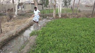 アフガニスタンの水利用を可能に